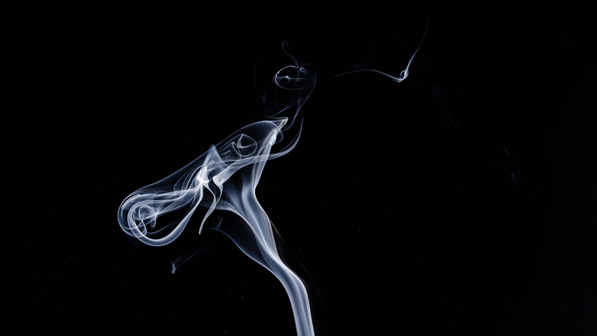 larret-tabac-moyens-et-bienfaits-sante.png